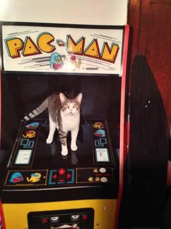 best of craigslist: Coney Island Pac-Man Machine - One of a kind